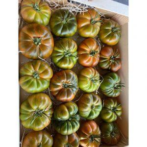 Tomate  eco 1K Andalucia ref:34